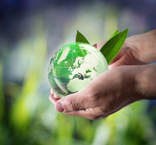 Curso Técnico de Gestão do Ambiente